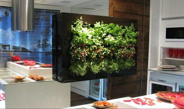 jardines verticales un toque de verde en tu casa