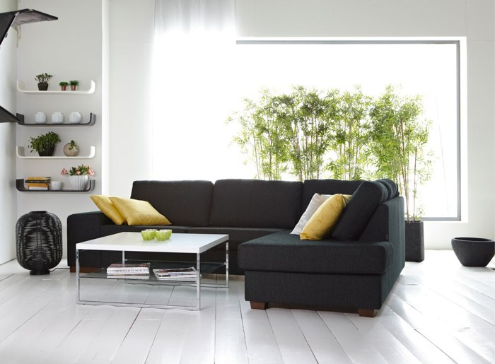 5 ideas para decorar tu casa con plantas de interior for Plantas de interior altas