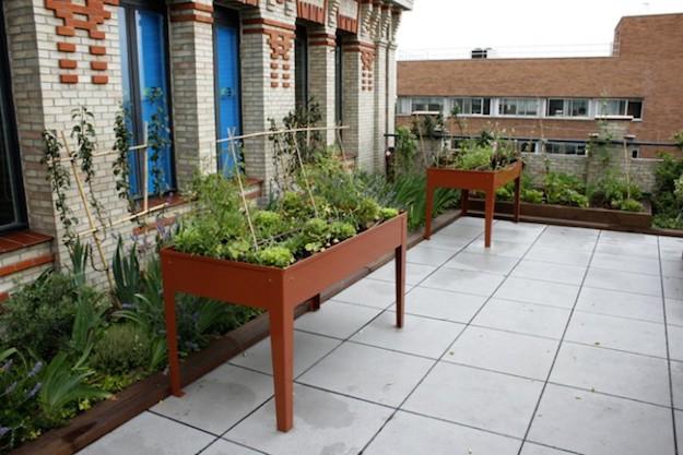 Crea tu propio huerto urbano - Huerto en la terraza ...